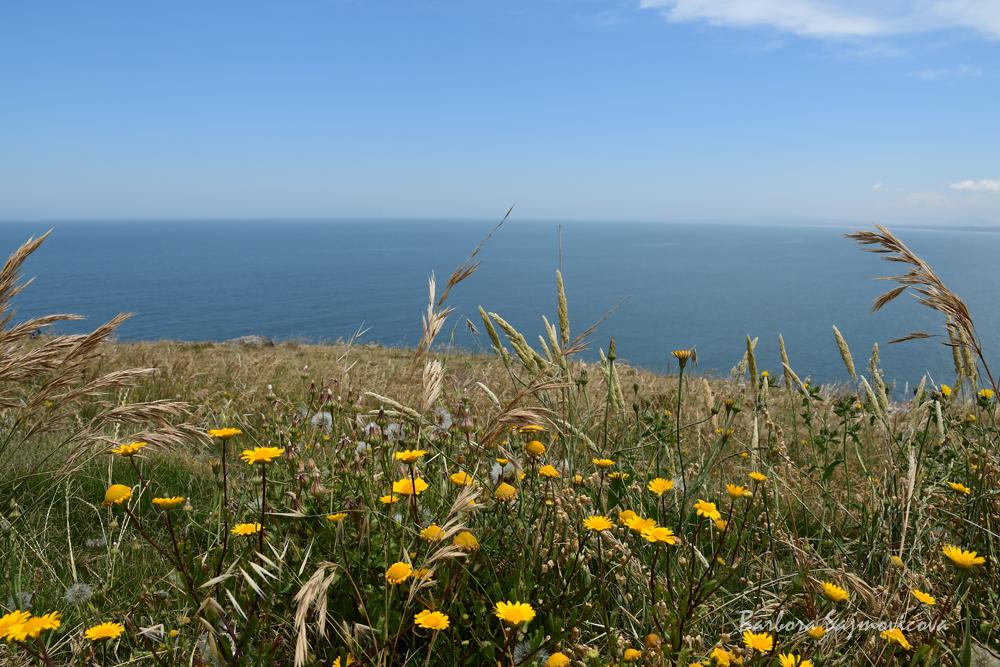 The view on Uruguayan coast near Punta del Este. Photo: Barbora Sajmovicova, 2016, Uruguay.