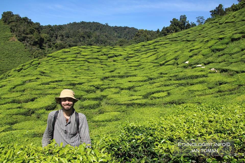 Jan Toman během cesty po Malajsii navštívil proslulé čajové plantáže. Foto: Archiv Jana Tomana